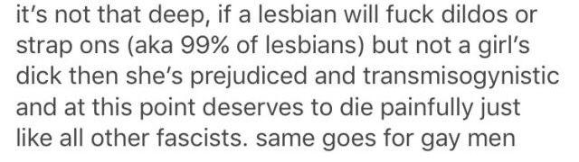 dildo comment. apparently lesbian = prejudice against penises