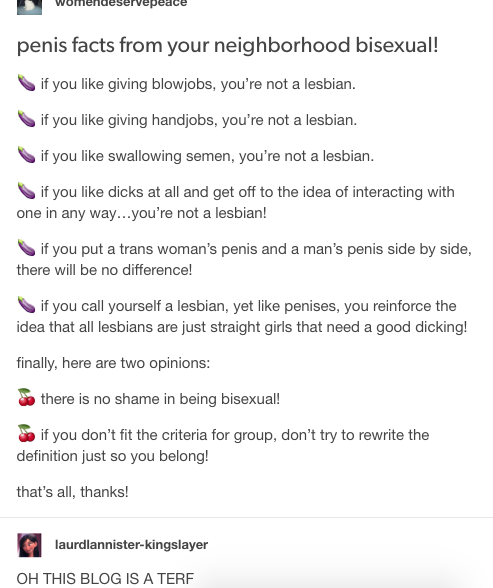 things that get you called terf