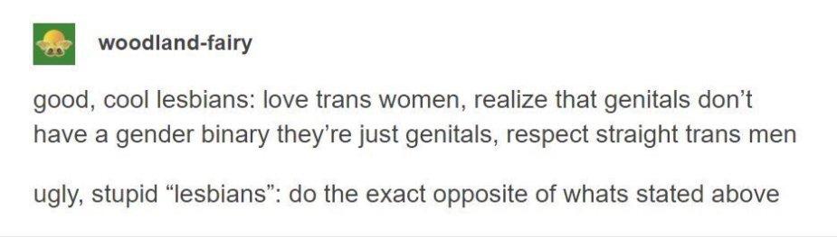 ugly lesbians